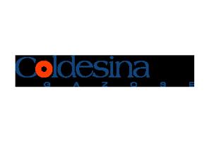 GSite web agency Ticino clienti Coldesina Gazose