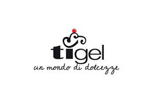 GSite web agency Lugano clienti Ti-Gel