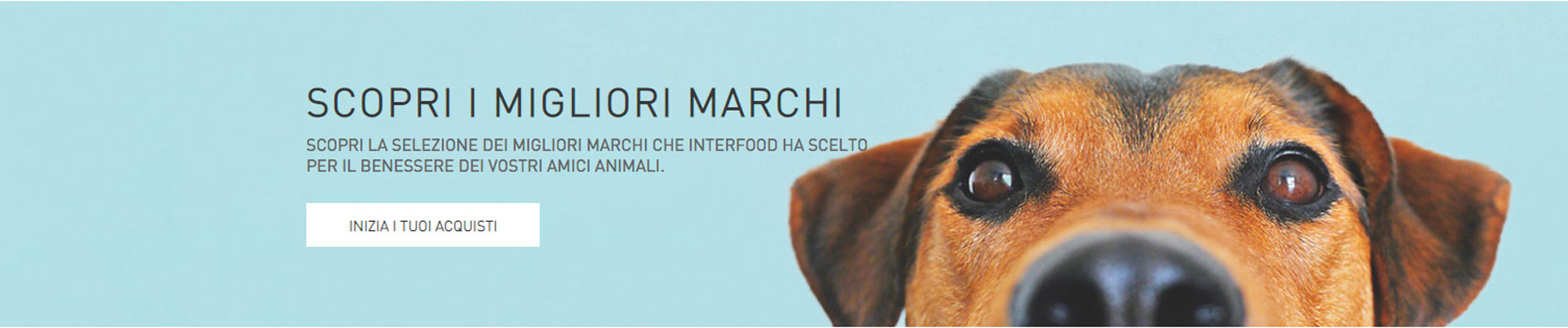 GSite Progetti Ecommerce Interfood banner promozionale